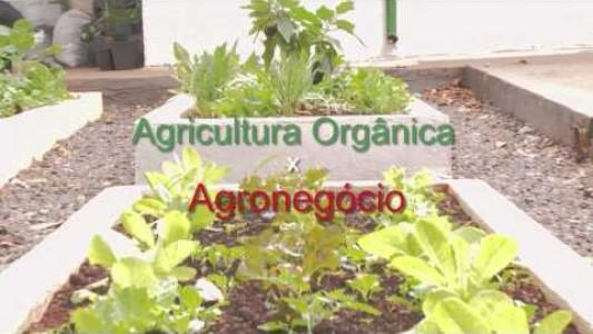 Semana de Agricultura Orgânica de Campinas